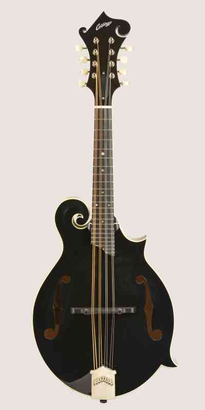 Photo of Collings MF 2017 Black Top