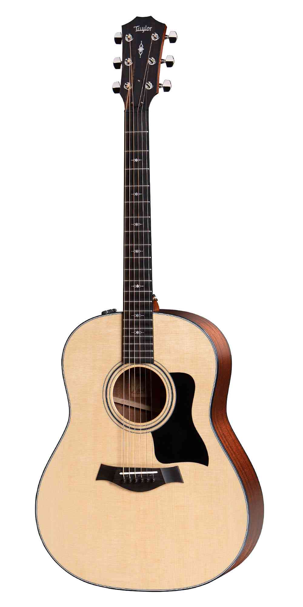 Taylor 317e Grand Pacific  Natural. Click to enlarge