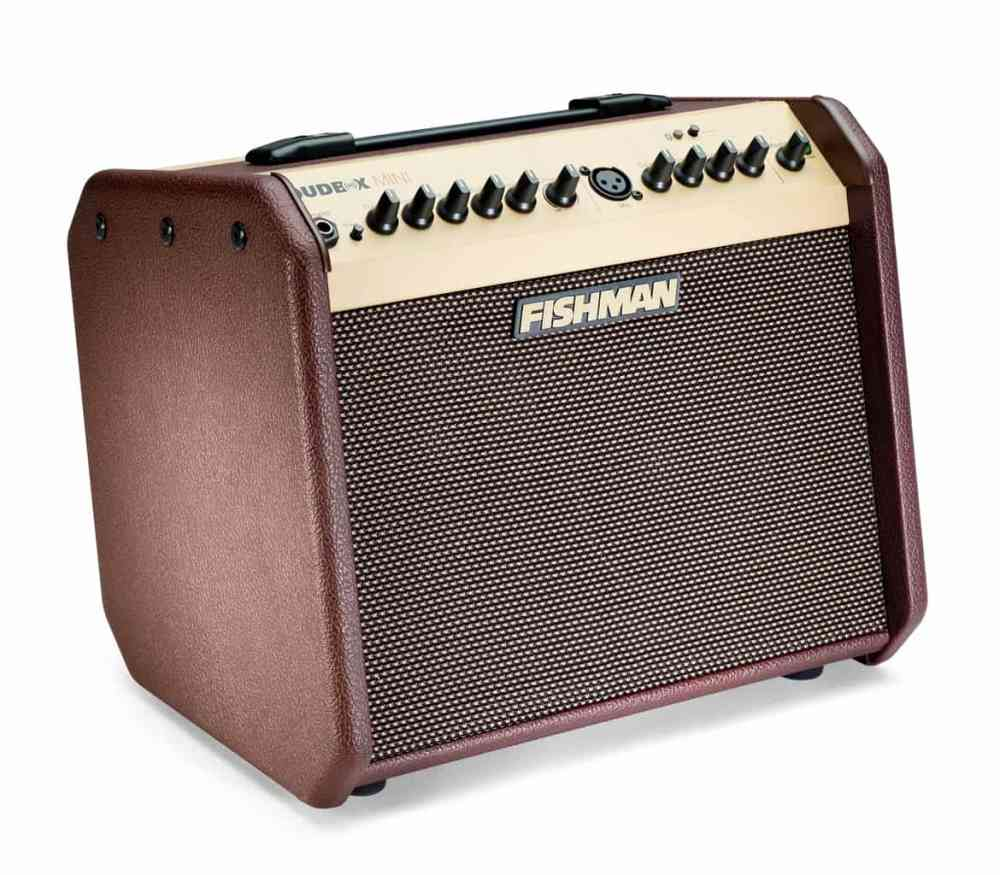 Fishman Loudbox Mini  . Click to enlarge