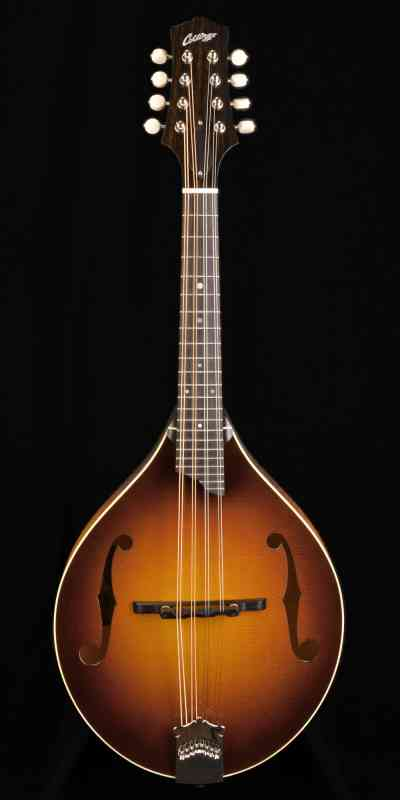 Photo of Collings MT 2019 Sunburst