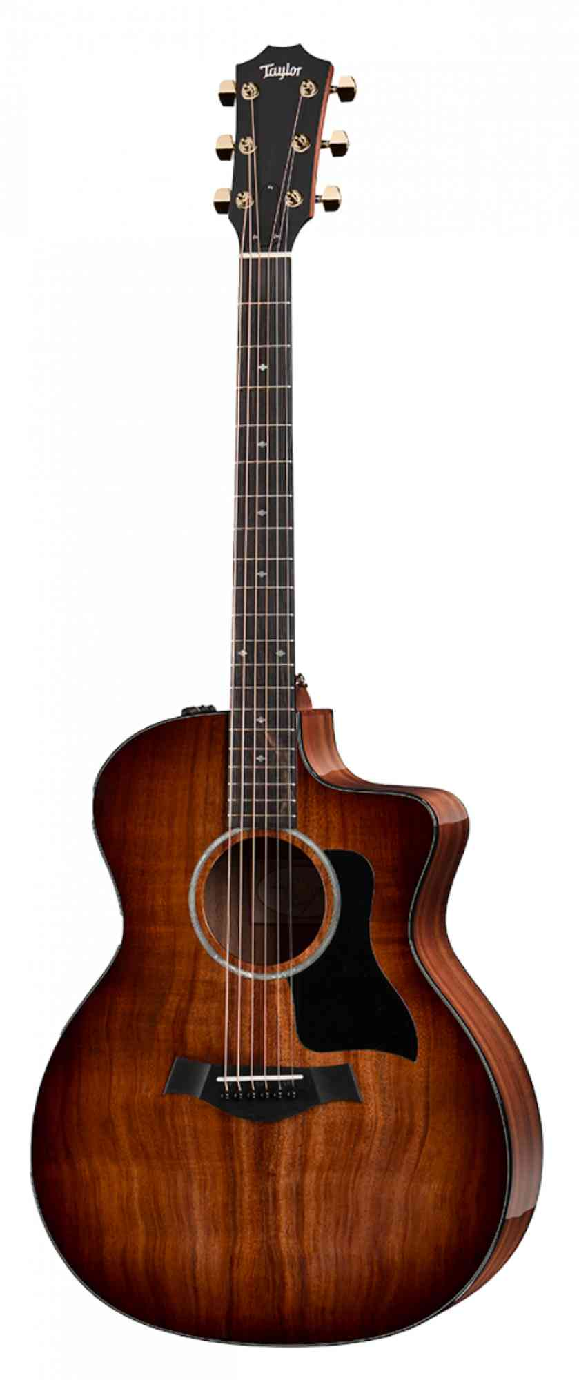 Taylor 224ce K DLX  Shaded Edgeburst. Click to enlarge